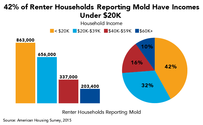 42% of Renter Households Reporting Mold Have Incomes Under $20K
